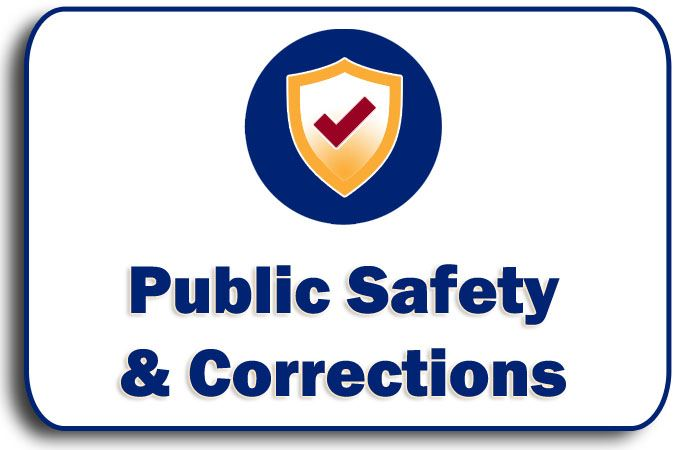 Public Safety Corrections